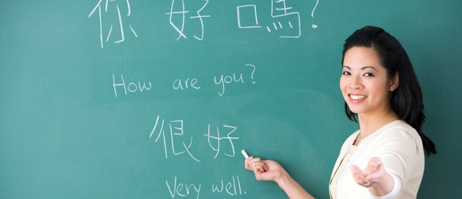 Mandarin Chinese Course for Beginners (Level 1)