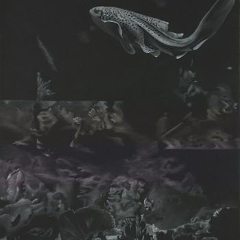 John Pusateri: Of Water