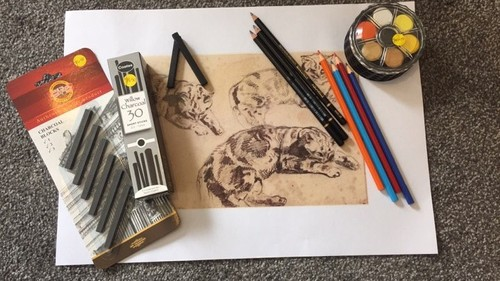 Developing Drawing Techniques