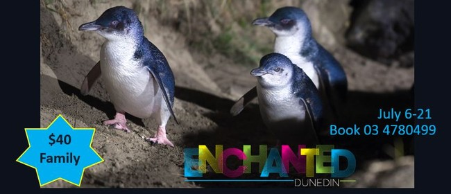 Enchanted Blue Penguin Family Deal