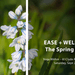 Ease + Wellbeing: The Spring Edition