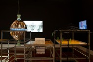 Feed Your Mind: Controlled Environment Lab