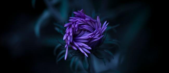 Flower/Macro Photography Beginners Workshop