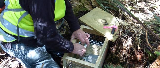 Predator Free Taupo Community Talk