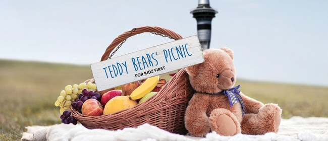 Teddy Bears Picnic for Kidz First Charity