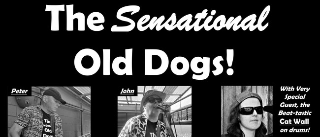 The Sensational Old Dogs with Cat