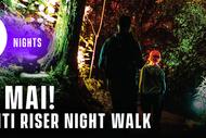 Ara Mai! Te Whiti Riser Night Walk