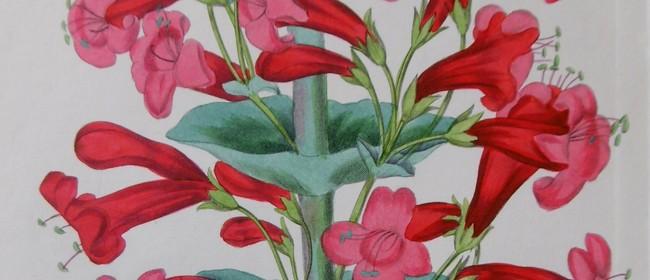 Antique Botanicals