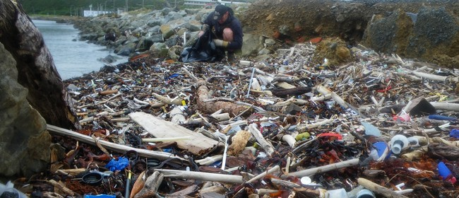 CAN Beach Clean Up Day - Help Us Make a Difference