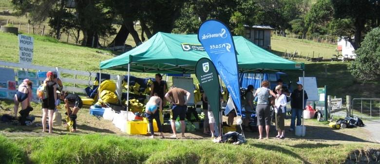 Seaweek - Free Community Snorkel Day