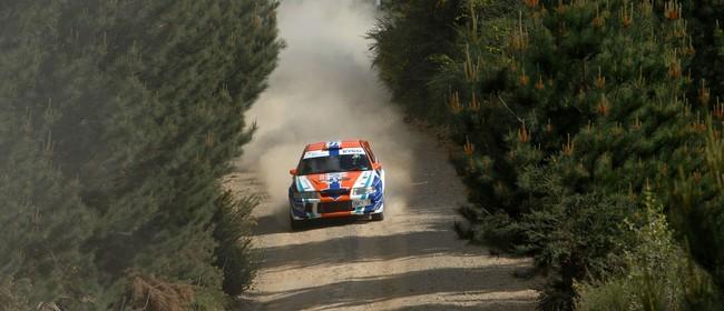 Ashley Forest Rallysprint