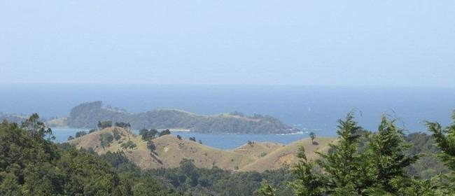 Sumer Coastal Yoga Retreat
