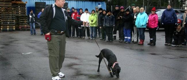 Steve and Jen White - Dog Training