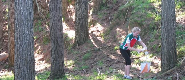 Orienteering Spring Series