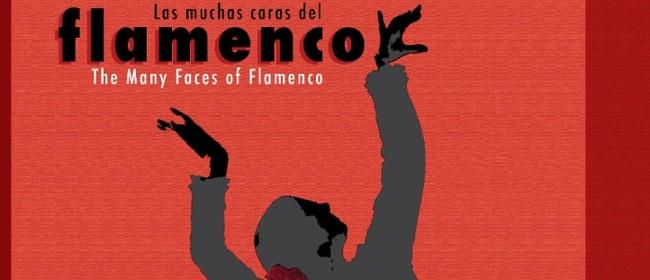 Las Muchas Caras Del Flamenco - The Many Faces of Flamenco