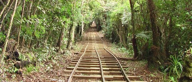 ECHO Walk Fest - Waiorongomai Rails and Trails