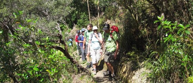 Waiheke Walking Festival 2012