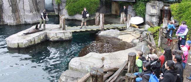 Seaweek at Auckland Zoo