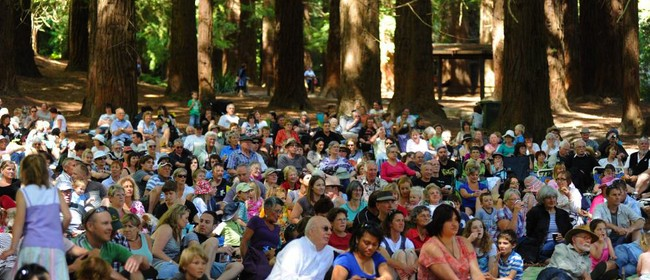 Redwoods Session - Outdoor Jazz and Classical Concert