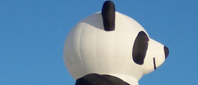 Trust House Balloons Over Wairarapa