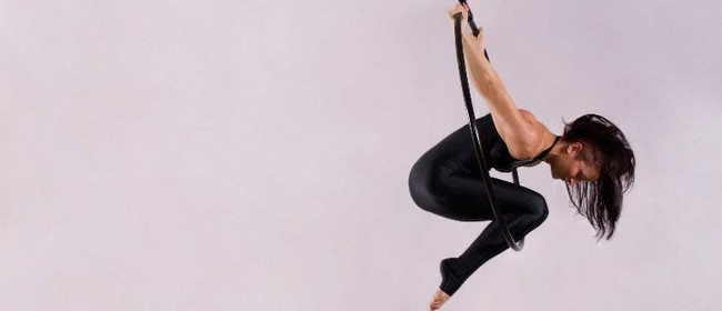Aerial Pole, Lyra, and Silks Workshops with Amy Richardson