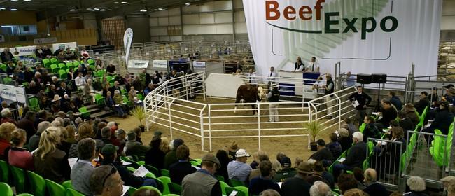 Beef + Lamb NZ - Beef Expo 2012
