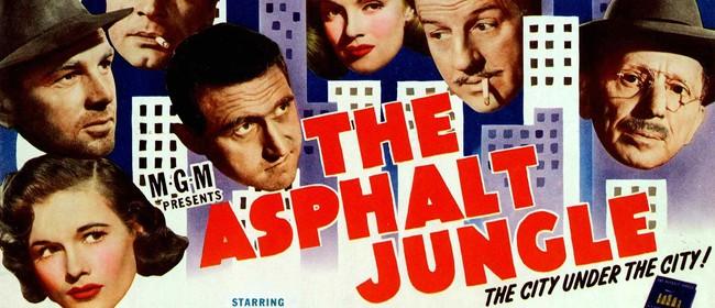 PNFS: The Asphalt Jungle
