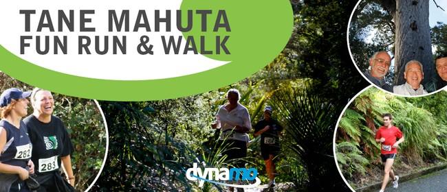 Tane Mahuta Fun Run & Walk