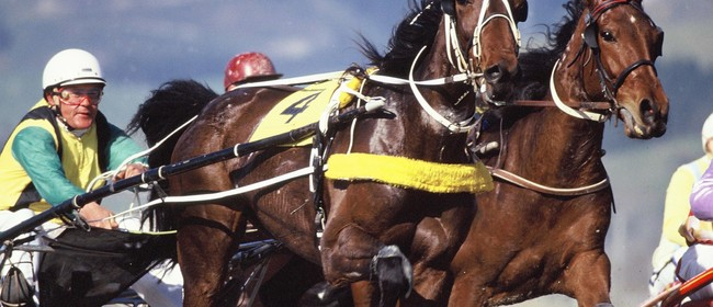 Nelson Harness Racing Club Winter Cup Festival