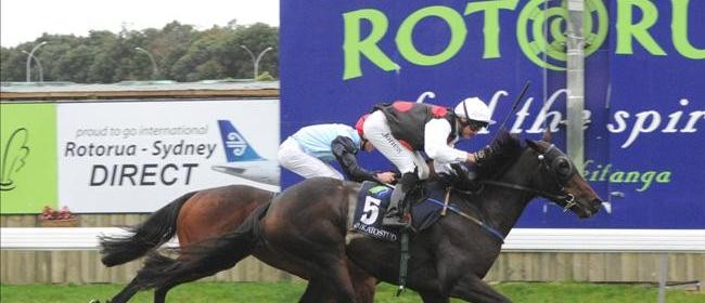 Campbell Infrastructure Rotorua Cup Day