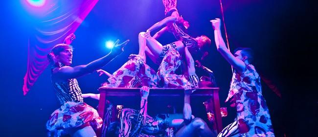 Cirque Non Sequitur