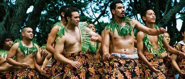 Pasifika Festival 2013