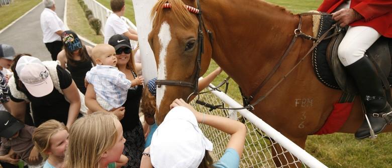 Interislander Summer Festival Paeroa Races