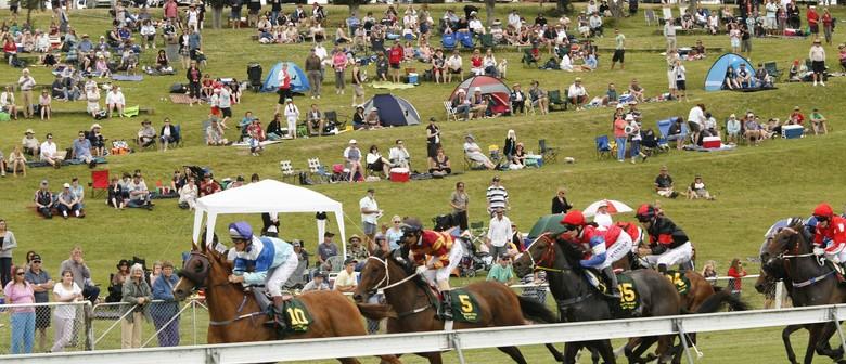 Interislander Summer Festival Waikouaiti Races