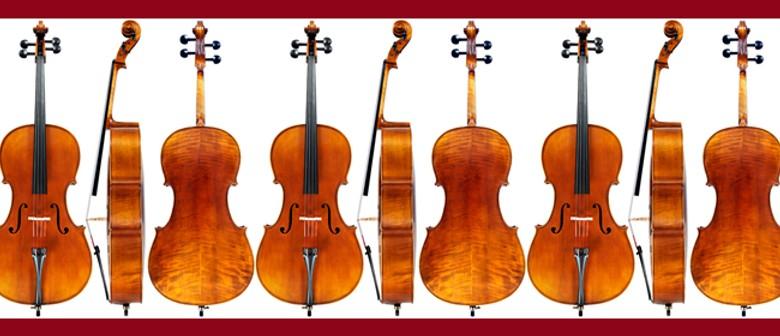 NZSM: Cellophonia II