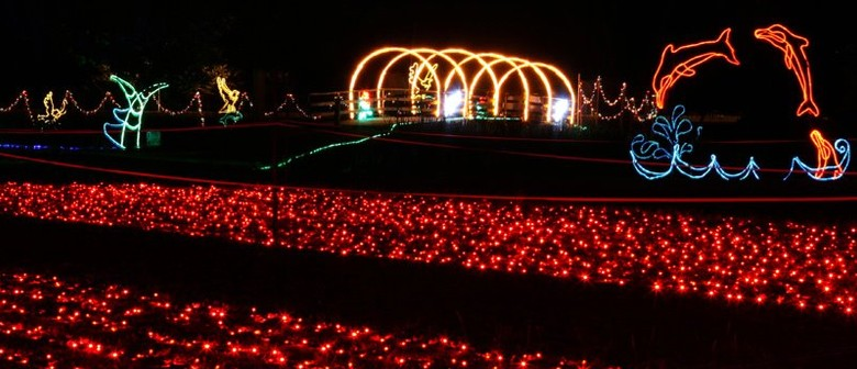 Fiesta of Lights - A Million Watts of Family Fun