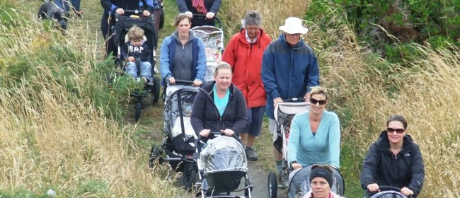 Sport Wellington Buggy Walk