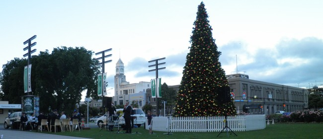 Palmerston North Christmas Tree Illuminate