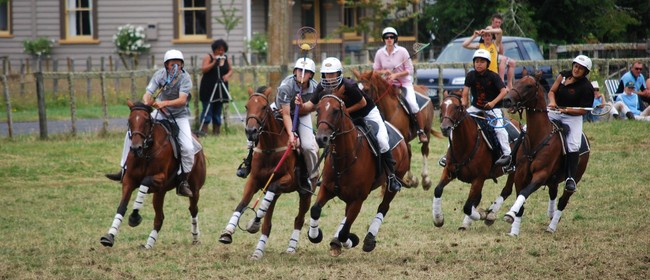 Tuwharetoa Polocrosse Carnival