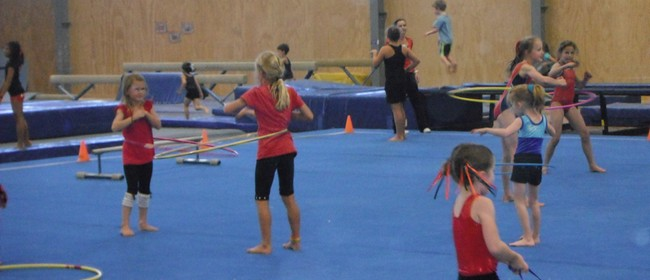 Tri Star Gymnastics Free Open Day