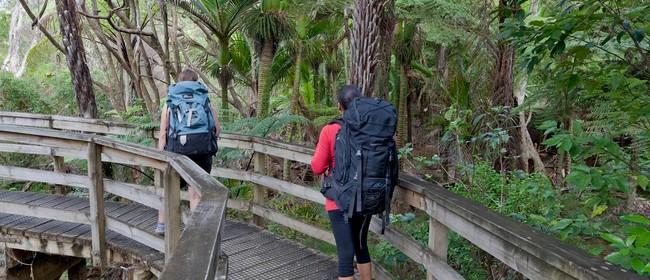 Great Barrier Island Walking Festival