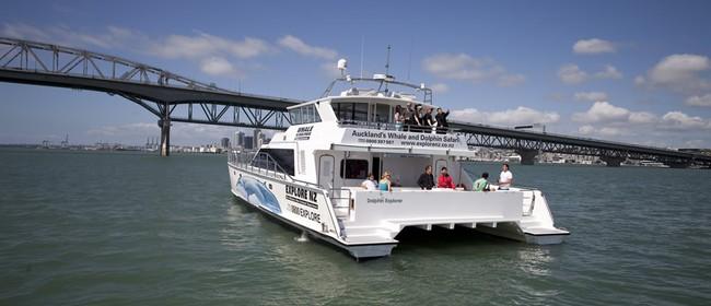 Explore NZ NYE 2012 Cruise