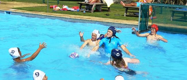 Flippa Ball - Paihia Summer Festival