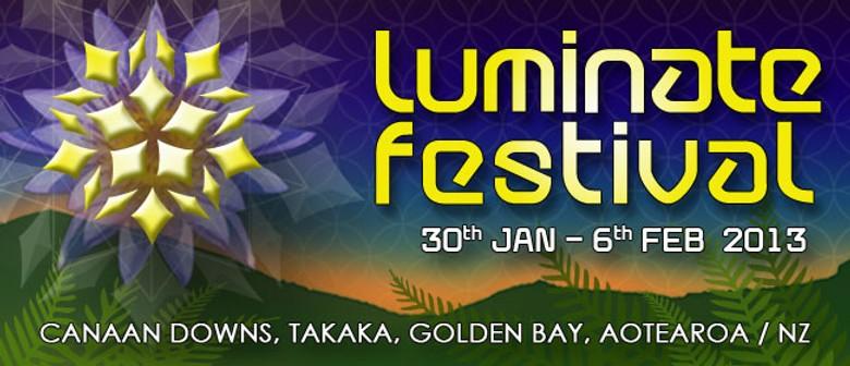 Luminate Festival 2013