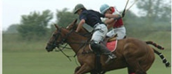Savile Cup - National Polo Event