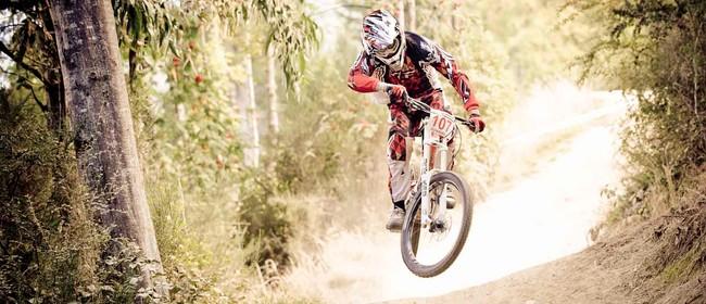 Vertigo Bikes DirtMasters Downhill