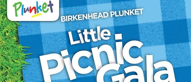 Birkenhead Plunket's Little Picnic Gala