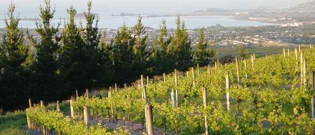 Wine Evening With Multi Award-winning Waimea Estates