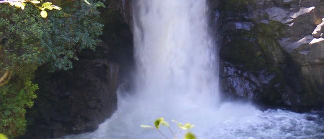 Waterfall Wander - Mahi Aroha