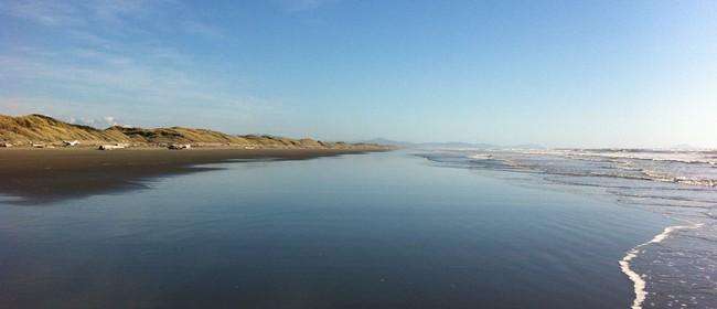 Twilight Beach Walk
